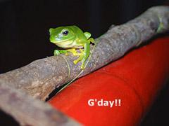 G'day!
